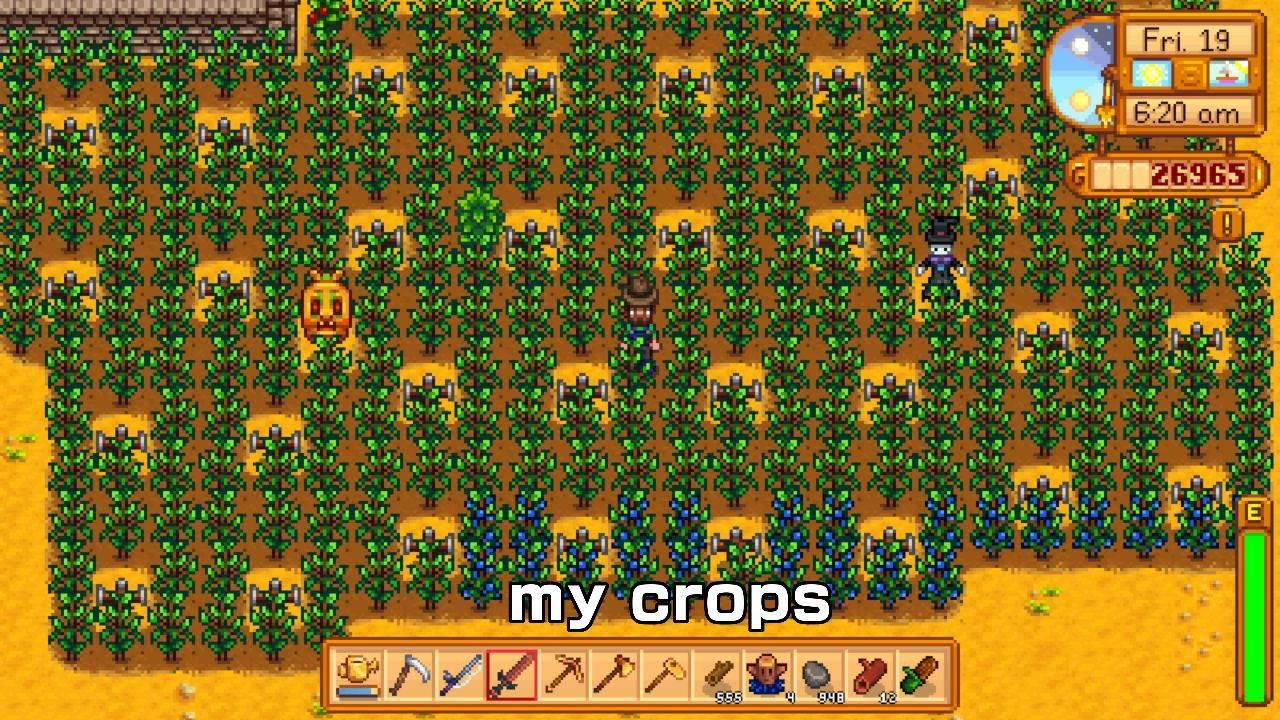 My crops